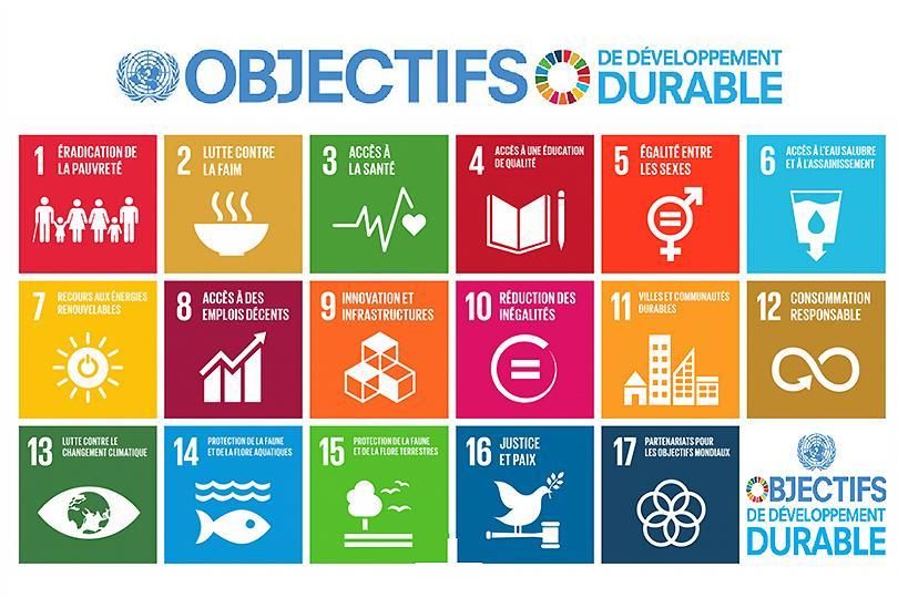 Objectifs de Développement Durable - ODD et Afrique Mobile